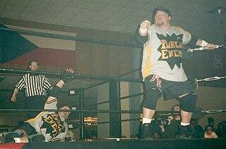 The Public Enemy (professional wrestling) Professional wrestling tag team