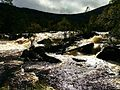 The River Is Gone Wild - panoramio.jpg