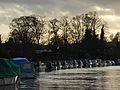 The River Thames, Hurley - geograph.org.uk - 283635.jpg