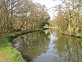 The River Wey and footpath on west bank - geograph.org.uk - 1221224.jpg