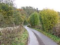 The bottom of the valley - geograph.org.uk - 1554017.jpg