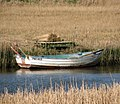 The reed cutters' boat - geograph.org.uk - 1803187.jpg