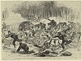 The stampede from Bull Run.jpg