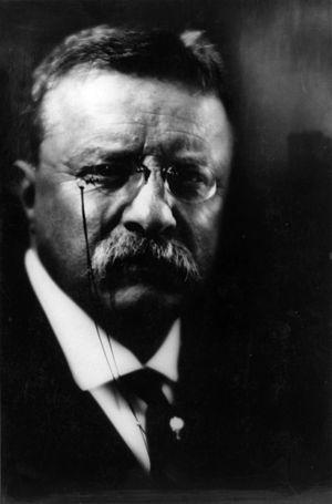 Pirie MacDonald - Image: Theodore Roosevelt by Pirie Mac Donald cph.3a 14470