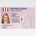 Thule Nation, Driving Licence.png