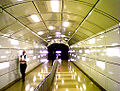 Time Machine - Time Tunnel 2009.jpg