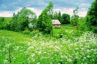 Tokarnia, Sanok County Village in Subcarpathian Voivodship, Poland