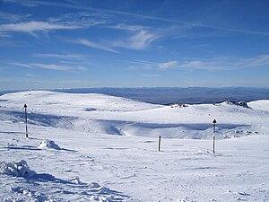 Torfeno Branishte - The upper part of Torfeno Branishte north of Cherni Vrah, with Lavcheto Peak ('Small Lion', 2052 m) on the right.