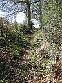 Track to Lambs Cross - geograph.org.uk - 1804511.jpg