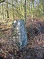 Triangulation pillar, Alton Grange - geograph.org.uk - 332432.jpg