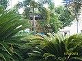 Trindade GO Brasil - Jardins da Pça. da Matriz - panoramio.jpg