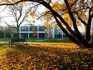 Triton College - Triton's campus in the fall