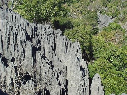Tsingy de Bemaraha 156