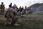 U.S. & Romanian Forces Conduct Bilateral Training 150226-M-XZ244-570.jpg