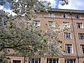 University Park MMB 36 Nightingale Hall.jpg