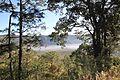 Valle al pie del Ceboruco - panoramio.jpg