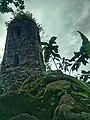 Vegetation before the ruins of Cagsawa Church belfry.jpg