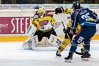 Vienna Capitals vs Fehervar AV19 -139.jpg