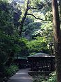 View near entrance of Akiyoshi Cave.jpg