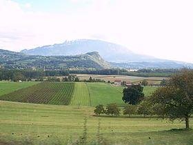 Image illustrative de l'article Bugey (AOC)