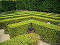 Villandry - château, labyrinthe (04).jpg