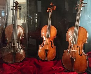 Antonio Mariani - Violin from Antonio Mariani from 1670 (left)