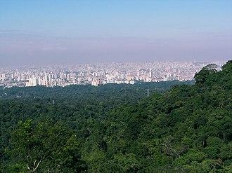 Urban forest - São Paulo city seen from Serra da Cantareira