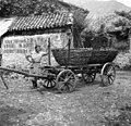 """Voz (ima """"školone"""" - na njih sta dve korpi, v katerih vozijo gnoj in krompir, Svino 1951.jpg"""