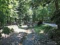 Vrnjačka reka - panoramio (2).jpg