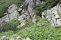 Vysoké Tatry, mezi Zbojnickou chatou a Rainerovou chatou (10).JPG
