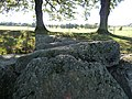 Wéris-dolmen d'Oppagne (17).jpg
