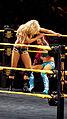 WWE NXT 2015-03-28 00-18-49 ILCE-6000 3949 DxO (17365022272).jpg