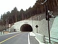 Wakahiko Tunnel south entrance.jpg