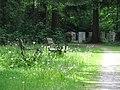 Waldfriedhof Neuer Teil GO-3.jpg