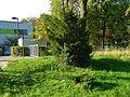 Walkmühlenweg, Pirna 125354021.jpg