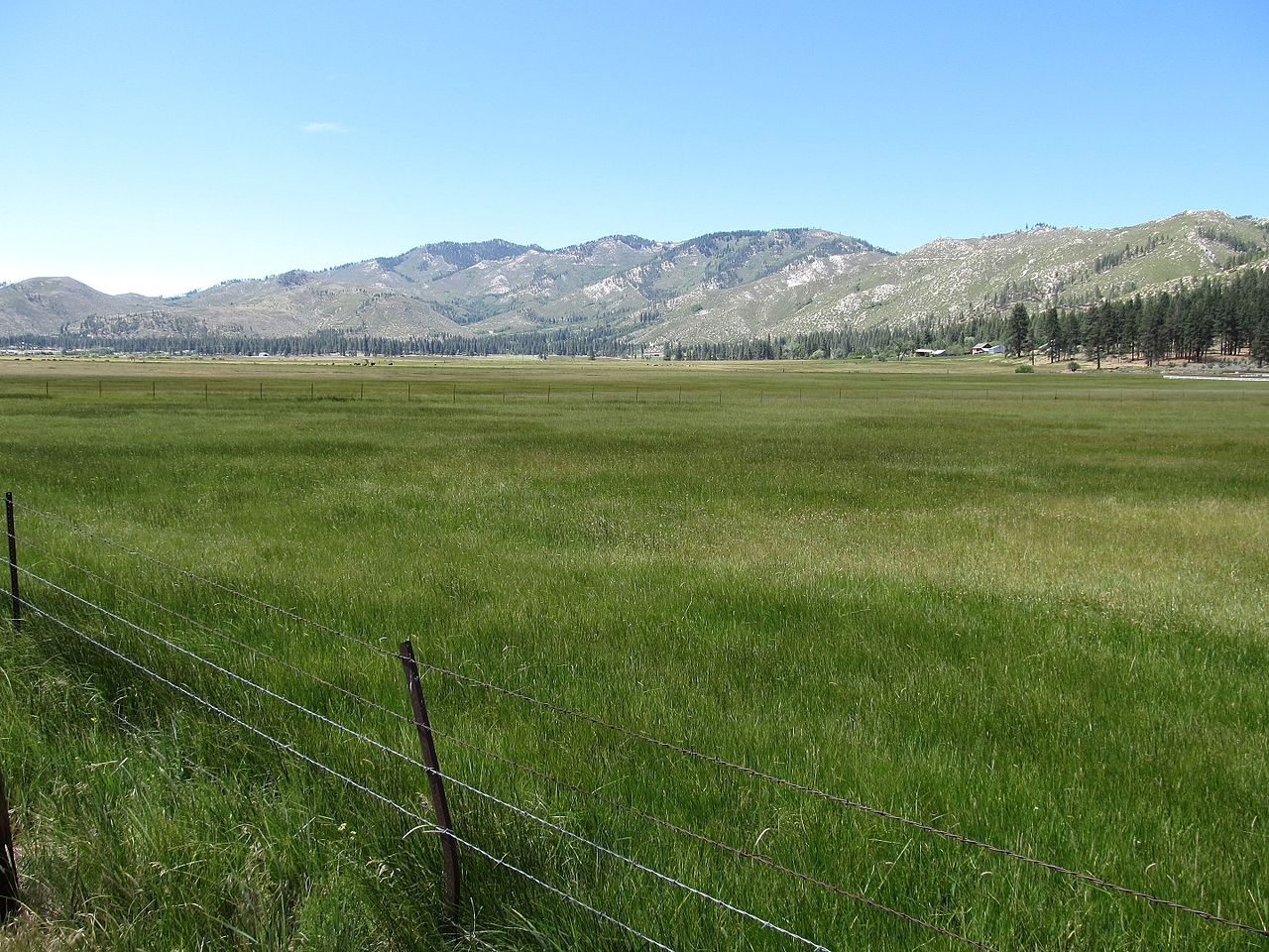 washoe valley Washoe valley is a census-designated place (cdp) in washoe county, nevada, united states it corresponds closely to the unincorporated community of new washoe city.