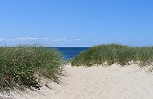Wellfleet Town Beach.JPG
