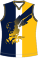 West Coast Eagles Jumper.png