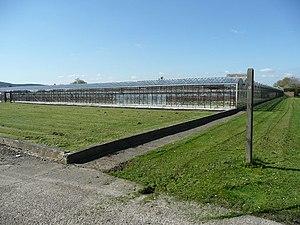 Cranleigh - West Cranleigh Nurseries