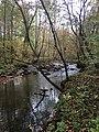 West Fork Eno River.jpg
