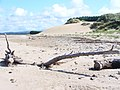 Whiteford Point - geograph.org.uk - 1417348.jpg