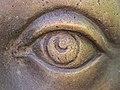 Wilhelmine's eye.jpg