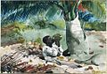 Winslow Homer - Under the Coco Palm (1898).jpg