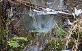 Winter Stream (6851977181).jpg