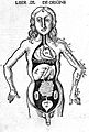 Woodcut, anatomical figure showing viscera, circa 1503. Wellcome L0001627.jpg