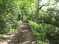 Woodside, Green Street - geograph.org.uk - 180668.jpg