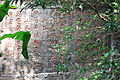 Wuyi Shan Fengjing Mingsheng Qu 2012.08.23 10-11-00.jpg