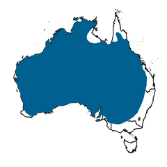Yellow-throatedMinerDistributionAtlasLivingAustralia.png