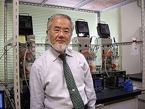Yoshinori Ohsumi - Ohsumi in his Tokyo Tech lab