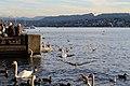 Zurich - panoramio (28).jpg